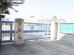 天美小学校