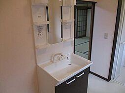 2ヵ所の洗面台...