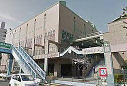 千歳桜小学校4...