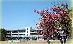 篠津中学校 2...