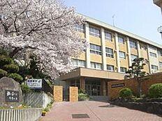 紀伊中学校