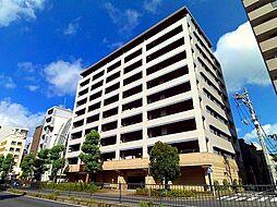 アデニウム横浜反町