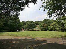 公園 約500m