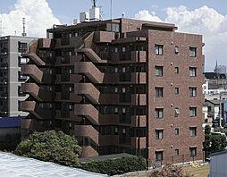 メゾンベルファーレ[603号室]の外観