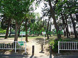 公園関根公園ま...