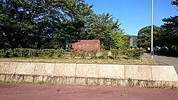 幸田中央公園