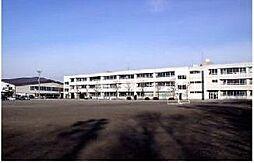 学区:陽南中学...