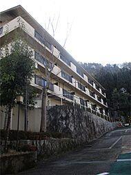 京都ガーデンテラス[409号室]の外観
