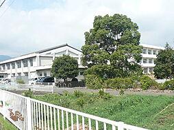 福沢小学校(1...