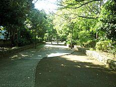 小柳公園 600m