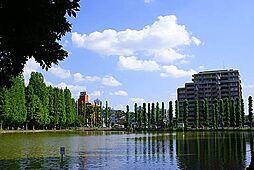 別所沼公園(4...