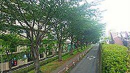 中川堰堤緑地80Mの環境に立在