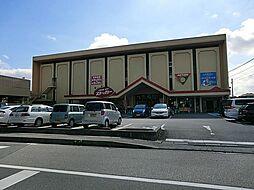 カスミ柏中央店