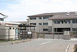 東松山市立松山...