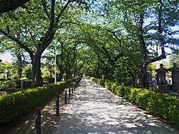 公園南青山三丁...