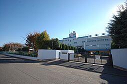 市立向原中学校