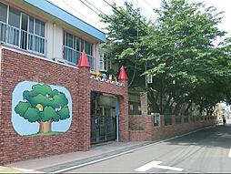 武蔵野幼稚園 ...