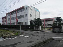 学区:上野小学...