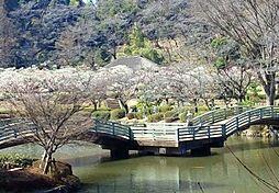 薬師池公園(2...