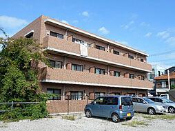 神奈川県川崎市中原区井田1丁目の賃貸マンションの外観