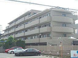 ライオンズマンション船橋三咲[2階号室]の外観