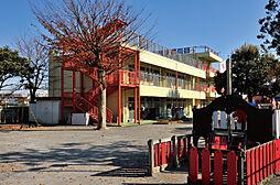 かしわ幼稚園