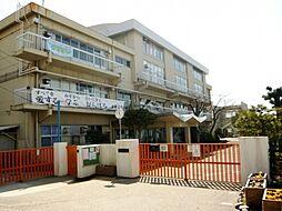 小学校神戸市立...