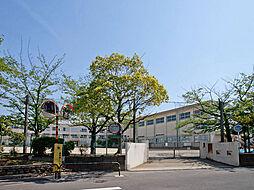 桜花小学校