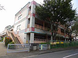 市立和田小学校...
