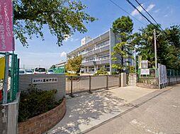 蓮田中学校