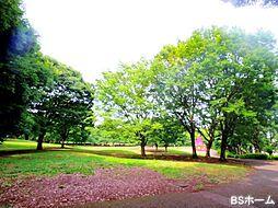 -祖師谷公園-...