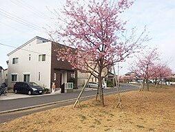 [一戸建] 千葉県流山市駒木 の賃貸【/】の外観