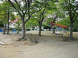 浅香山公園まで...