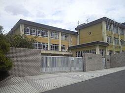 春日丘中学校