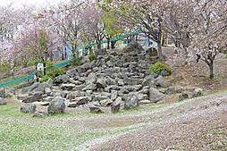 自然の多い公園