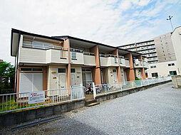 [テラスハウス] 千葉県柏市西柏台1丁目 の賃貸【/】の外観