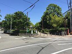 香椎駅東1号緑...