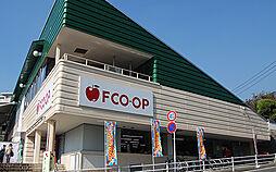 FCO・OP沼...