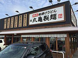 丸亀製麺船橋芝...