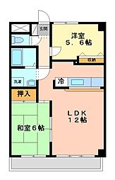 神奈川県川崎市高津区下作延3丁目の賃貸マンションの間取り