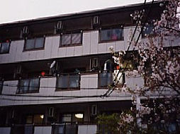 ファインコート萱島[4階]の外観