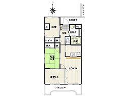 JR常磐線 泉駅 徒歩8分の賃貸マンション 3階3LDKの間取り