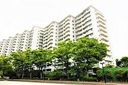 新多摩川ハイム6号棟 中野島駅歩2分 ペット可物件です。