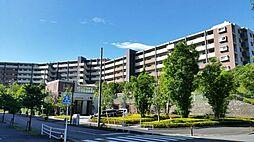 小田急多摩線 はるひ野駅 はるひ野1丁目 マンション