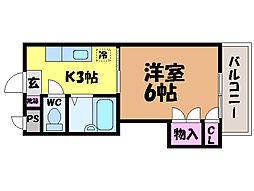 愛媛県松山市枝松1丁目の賃貸マンションの間取り