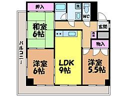 愛媛県松山市一番町1丁目の賃貸マンションの間取り