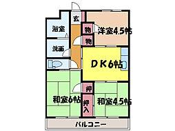 愛媛県松山市久万ノ台の賃貸マンションの間取り