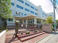 練馬区立石神井小学校 距離410m
