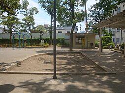 公園  千石公...