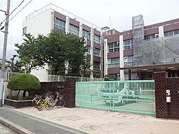 墨江丘中学校(...